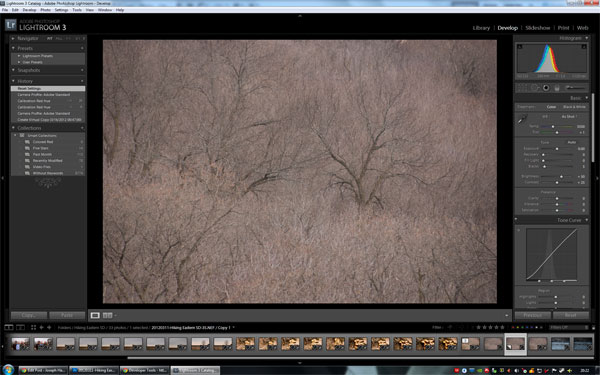 Lightroom Step1